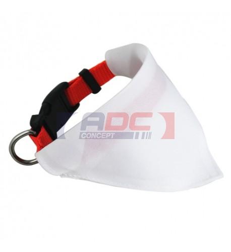 Collier rouge avec le bandana pour chien