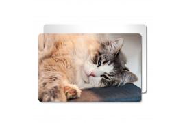 Tableau photo Chromaluxe en aluminium blanc brillant 10 x 15 cm (vendu à l'unité)